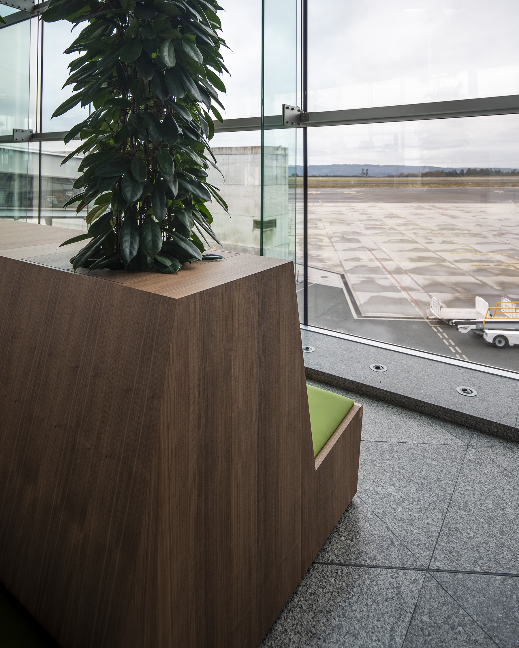 Relaxarea_Airport_Plant
